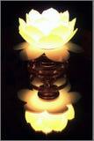 Lotus Lamp. A yellow lotus lamp stock photo