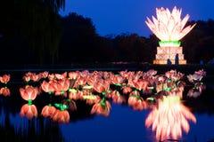 Lotus lantern on water Stock Image