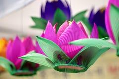 Lotus-Laterne Stockbild