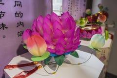 Lotus-Laternen Stockbilder