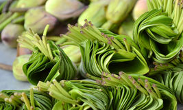 Lotus leaves bundled for sale. Bunched lotus flower leaves stacked for sale Stock Photo