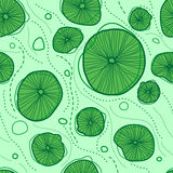 Lotus leaves pattern Stock Image