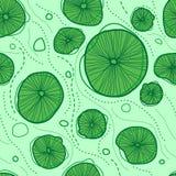 Lotus leaves pattern Stock Image