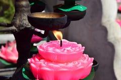 Lotus-lichten Stock Foto's