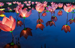 Lotus light in pond. Lotus light reflection in pond Royalty Free Stock Photos