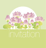 Lotus lilies decorative floral invitation card template. Vector illustration Royalty Free Stock Images