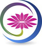 Lotus logo. Illustration art of a lotus logo with isolated background Stock Images