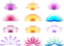Lotus Logos Image stock