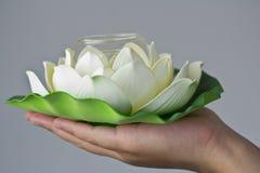 Lotus a mano Imágenes de archivo libres de regalías