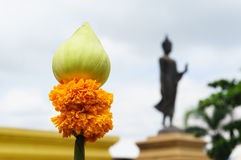 Lotus and marigold for worship Royalty Free Stock Photography