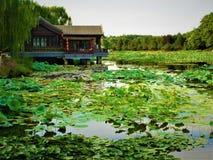 Lotus, meer, aard, milieu en traditioneel Chinees huis royalty-vrije stock afbeelding