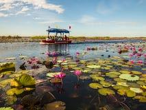 Lotus-Meer und -boot lizenzfreie stockfotos