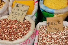 Lotus and Millet for sale Stock Image