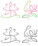Lotus mit Blättern Stockfotos