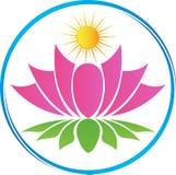 Lotus mit Sonne Stockfoto