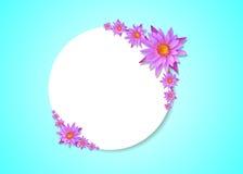 Lotus mit Weißbuchhintergrund Stockbild