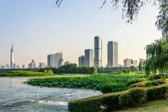 Lotus and Nanjin city Stock Photo
