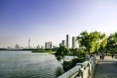 Lotus and Nanjin city stock photography