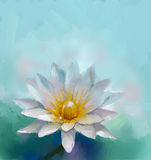 Lotus oil painting Stock Photography