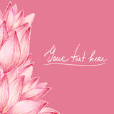 Lotus petals design card Royalty Free Stock Image