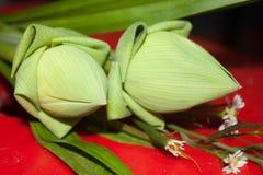 Lotus petals fold Royalty Free Stock Photography