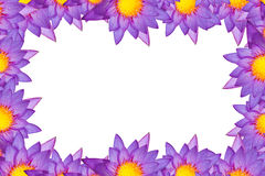 Lotus picture frame. In white background Stock Photos
