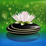 Lotus pink flower on black spa stone logo. Lotus flower on black spa stone logo on water lake background vector template image Royalty Free Stock Photography