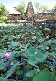 Lotus pond in famous Bali temple, Ubud. A photograph showing the beautiful lotus pond in the famous Water Palace of Ubud, the temple Pura Saraswati, dedicated to stock photos