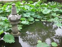 Lotus Pond Garden Pagoda Arkivfoto