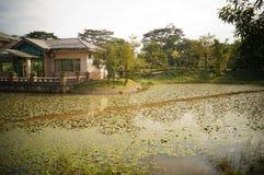 Lotus pond landscape Stock Photography