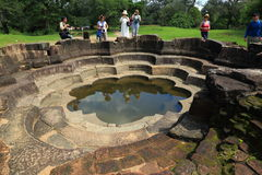 Lotus pond in Polonnaruwa Stock Photography