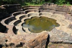 Lotus pond in Polonnaruwa Stock Photos