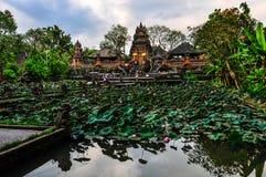Lotus Pond in Saraswati Temple in Ubud, Bali Royalty Free Stock Photo