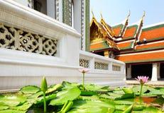 Lotus pond in Thai temple Stock Image