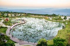 A lotus pond in twilight Stock Photos