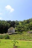 Lotus pond of wanshi botanical garden Stock Photos