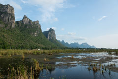 Swamp. In Sam-Roi-Yot National park. Prachuap Khiri Khan Province. Thailand Royalty Free Stock Images