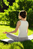 In the lotus position on the nature background Stock Photos