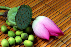 Lotus and rattan Stock Image