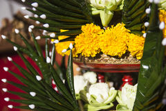Lotus, ringblomma och vikt bananbladprydnad Arkivbilder