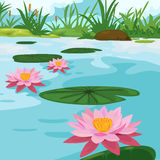 Lotus river. In cartoon is great Stock Photos