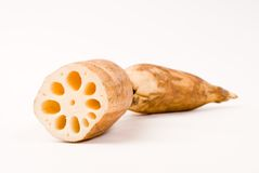 Lotus root. On the white background Royalty Free Stock Images