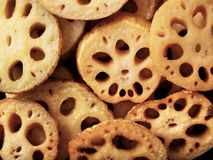 Lotus root. Close up of cooked lotus root food background Royalty Free Stock Photos