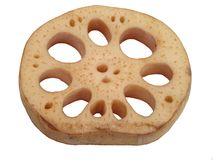 Lotus root Stock Images