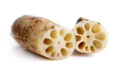 Lotus Roots. Close up Lotus root on white background Royalty Free Stock Photography