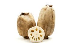 Lotus roots Stock Photo