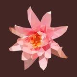 Lotus rose polygonal, fleur abstraite, illustration de vecteur Image libre de droits