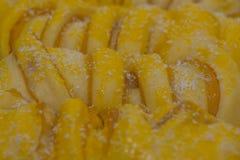 Lotus rye coconut bread roll Stock Photos