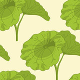 Lotus. Seamless pattern with lotus, hand draw  illustration Royalty Free Stock Images