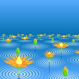 Lotus See